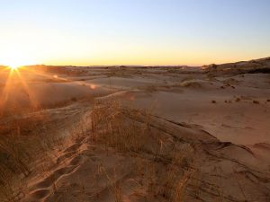 Witsand Nature Reserve